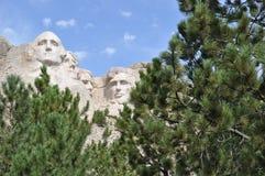 Skogsmarker för Mt Rushmore South Dakota arkivbild