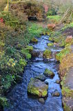 Skogsmarkström med vattenfallet. royaltyfri fotografi