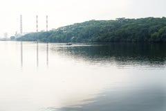 Skogsmarkstrand Fotografering för Bildbyråer