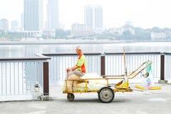 Skogsmarkstrand Singapore royaltyfria foton
