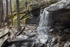 Skogsmarkvattenfall i de Catskill bergen royaltyfri bild
