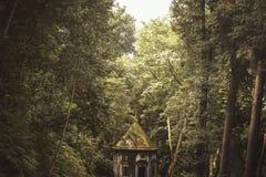 Skogsolljusram arkivfoton