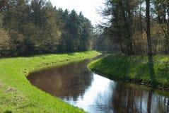 skogström Arkivbild