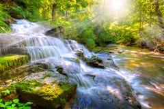 Skogström och vattenfall Royaltyfria Bilder