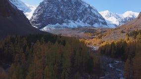 Skogström som kör över mossy rocks Bergturkosflod bland stenar och maxima Höstgulinglärken växer stock video