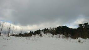 Skogtidschackningsperiod i vintern, rörande moln stock video