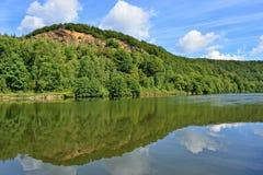 Skogträd som reflekterar i flodvatten Royaltyfria Bilder