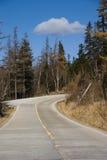 skogväg Royaltyfria Bilder