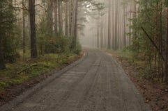 Skogväg. Royaltyfria Foton