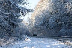 Skogväg i vintern Royaltyfri Bild