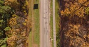 Skogväg och cykelbana stock video
