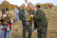 skogvaktare som förbereder unga trädet Royaltyfria Foton