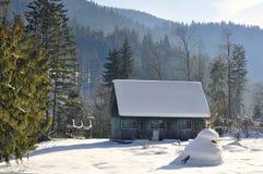 Skogvaktarehus Fotografering för Bildbyråer