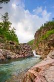 skogvatten Arkivfoto