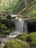 skogvattenfall Royaltyfri Fotografi