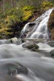 skogvattenfall Fotografering för Bildbyråer