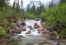 Skogvattenfall Arkivfoto