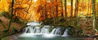 Skogvattenfall