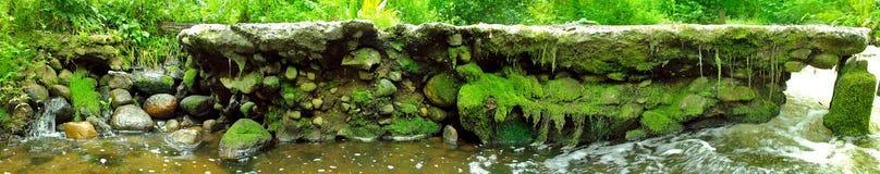 Skogvattenfall i sommaren Royaltyfri Fotografi