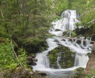 Skogvattenfall Myantyukoski, stenkaskad för tre moment i den Paanajärvi nationalparken Arkivbilder