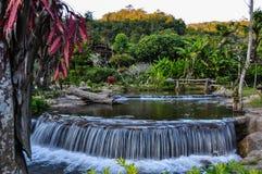 Skogvattenfall och rocks Royaltyfria Bilder
