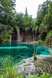 Skogvattenfallet faller in i en turkos, den kristallklara sjön Plitvice nationalpark, Kroatien arkivbilder