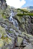 Skok瀑布,高Tatras在斯洛伐克 图库摄影