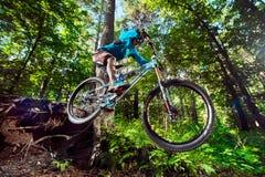 Skok i komarnica na rowerze górskim Zdjęcie Royalty Free