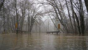 Skokomish rzeki powodzie od ulewnego deszczu Fotografia Royalty Free