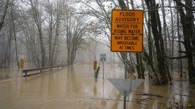 Skokomish rzeki powodzie od ulewnego deszczu Zdjęcie Stock