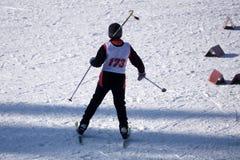 Skokowej narciarki sztuki obruszenia czerwony sezonowy słońce obrazy royalty free