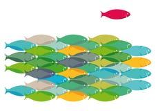 Skola av fiskdesignen vektor illustrationer