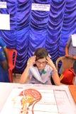 Skola- & collageutställning Royaltyfri Fotografi