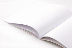skola för rasteranteckningsbokpapper Arkivbild