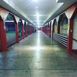 Skola Hall Royaltyfri Bild