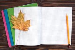 Skolaanteckningsbok och blyertspenna Arkivfoto