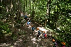Skolbarn i skog royaltyfri foto