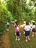 Skolbarn - naturutflykt Royaltyfria Bilder