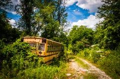 Skolbuss i en skrot fotografering för bildbyråer