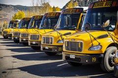 Skolbuss som parkeras och i rad stås royaltyfria bilder