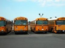 Skolbussar Royaltyfri Bild