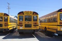 Skolbussar Arkivbild