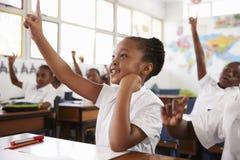 Skolflicka som lyfter handen under en kurs på grundskolan royaltyfria foton