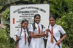 Skolflicka tre i likformig nära Kandy på Sri Lanka Fotografering för Bildbyråer