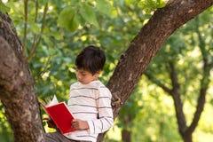Skolpojken sitter i en äpplefruktträdgård på jordningen i ett träd Honom royaltyfria foton