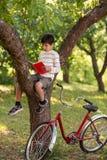 Skolpojken sitter på trädet i en äppleträdgård eller skogen royaltyfria bilder
