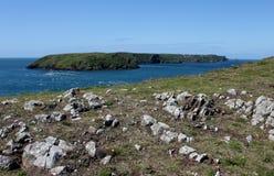 Skomer海岛看法从Pembrokeshire陆岬的 库存照片