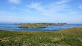 Skomer ö från svalas tillflyktsort i Wales arkivfoto