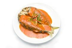 Skoncentrowany curry z makreli i pikantność ziele fotografia stock