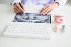 Skoncentrowany dentysty obsiadanie przy sto?em z szcz?k? pobiera pr?bki z?bu modela w stomatologicznej biurowej fachowej stomatol obraz royalty free
